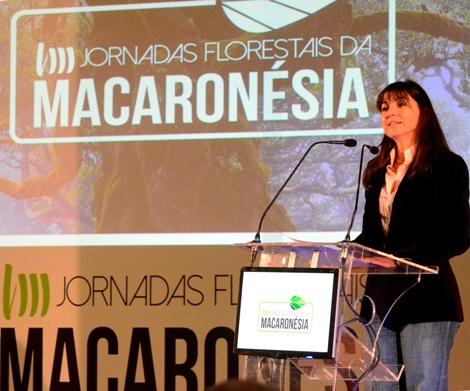 O Governo tem dado passos significativos no planeamento da área florestal da Madeira