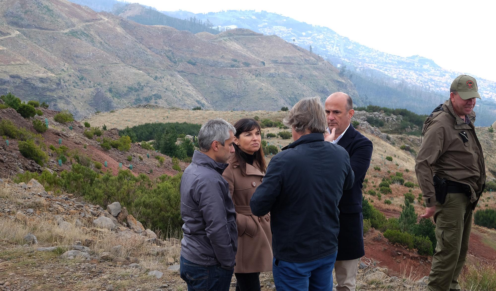 Reflorestação das serras é grande prioridade do Governo Regional