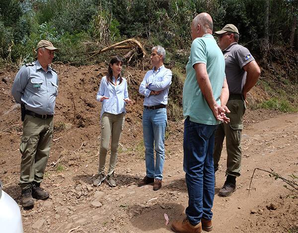 Governo limpa 30 km de estradas florestais na Ponta do Sol
