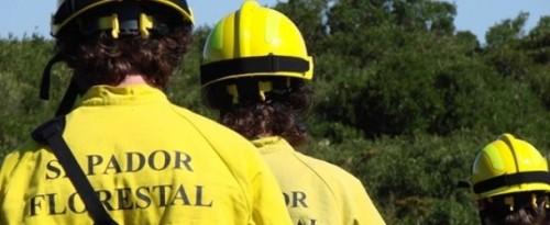 Governo Regional não mente nem viola a lei