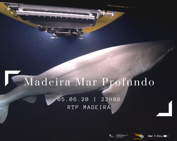 """Documentário """"Madeira Mar Profundo"""" na RTP Madeira"""