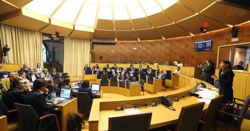 Susana Prada defendeu diplomas na ALM para proteção da área do Cabo Girão
