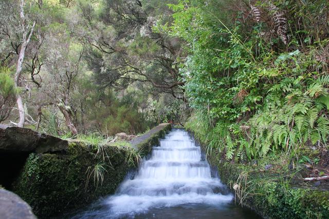 Plano de Gestão da Região Hidrográfica do Arquipélago da Madeira