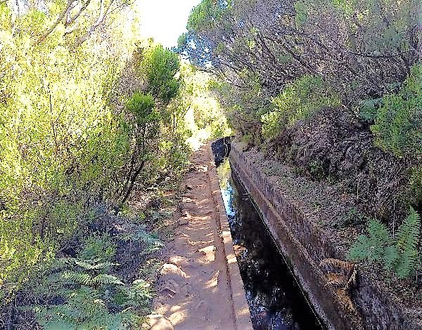Ambiente investe na limpeza de percursos pedestres recomendados