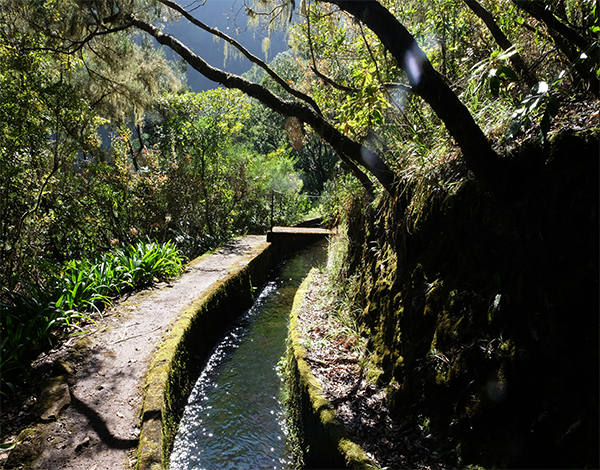 Comissão Nacional da UNESCO escolhe Madeira para encontro