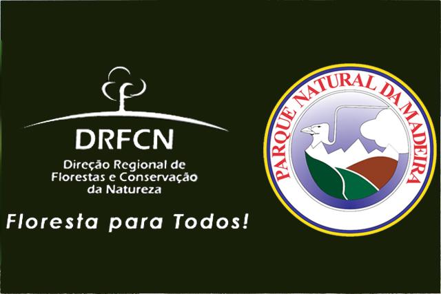 Instituto de Florestas lança concurso de ideias para imagem institucional
