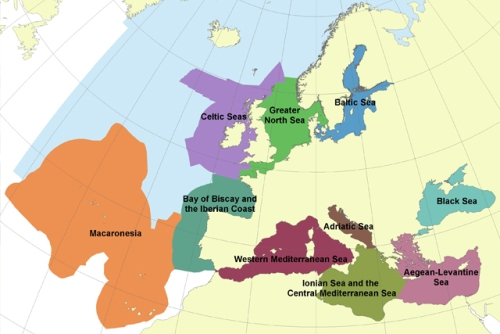 Madeira deverá integrar maior região marinha da Europa