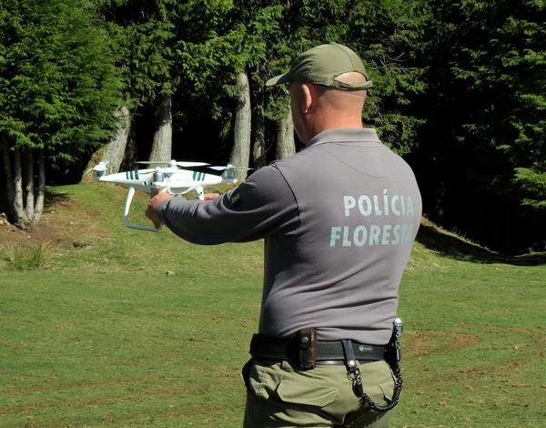 Drones reforçam vigilância florestal