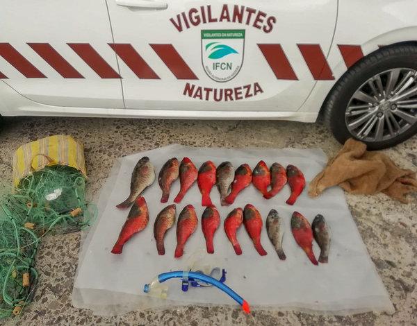 Vigilantes da Natureza detetam pesca ilegal na Reserva do Garajau