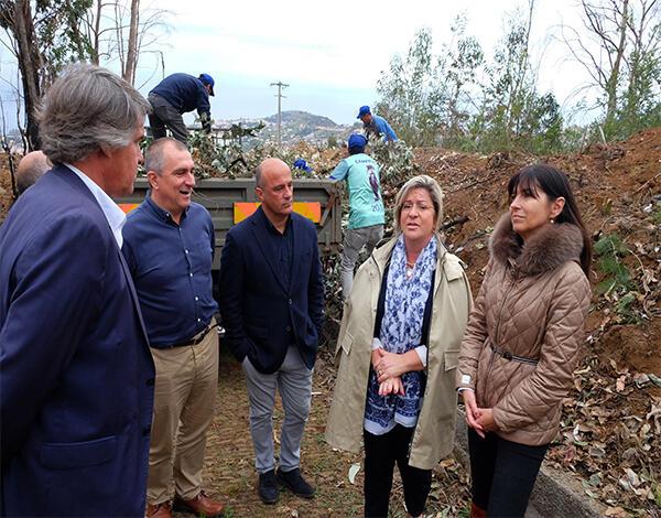 Governo Regional vai limpar mais 1400 hectares de floresta até 2020