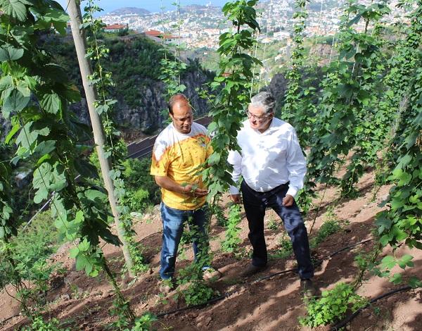 Humberto Vasconcelos valoriza produção de lúpulo na Região