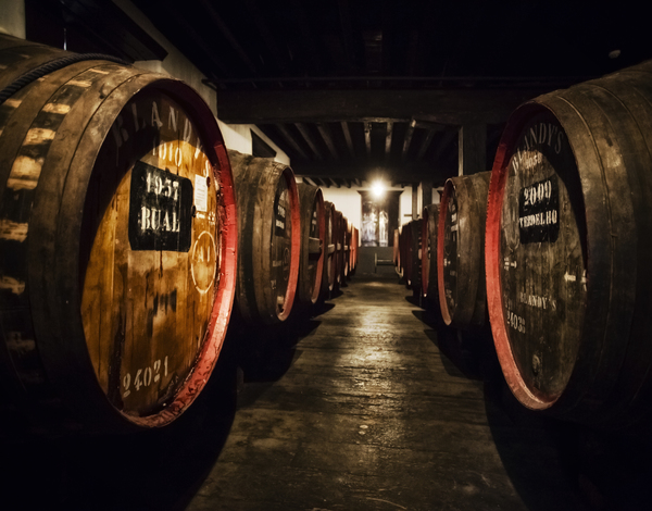 Vinho Madeira na Vinexpo Bordéus 2019