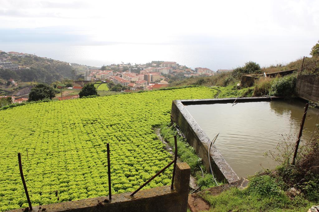 2,3 milhões investidos em pequenos projetos agrícolas