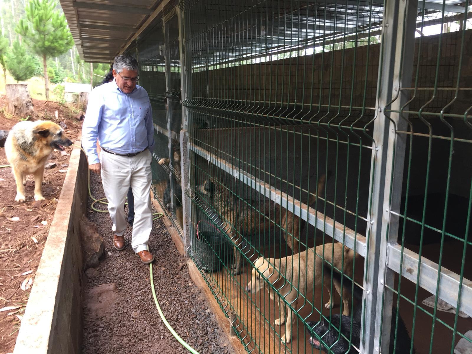 Governo Regional apoia financeiramente associações animais