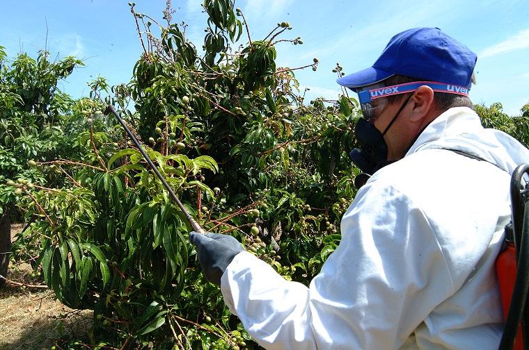 Acções de sensibilização em aplicação de produtos fitofarmacêuticos