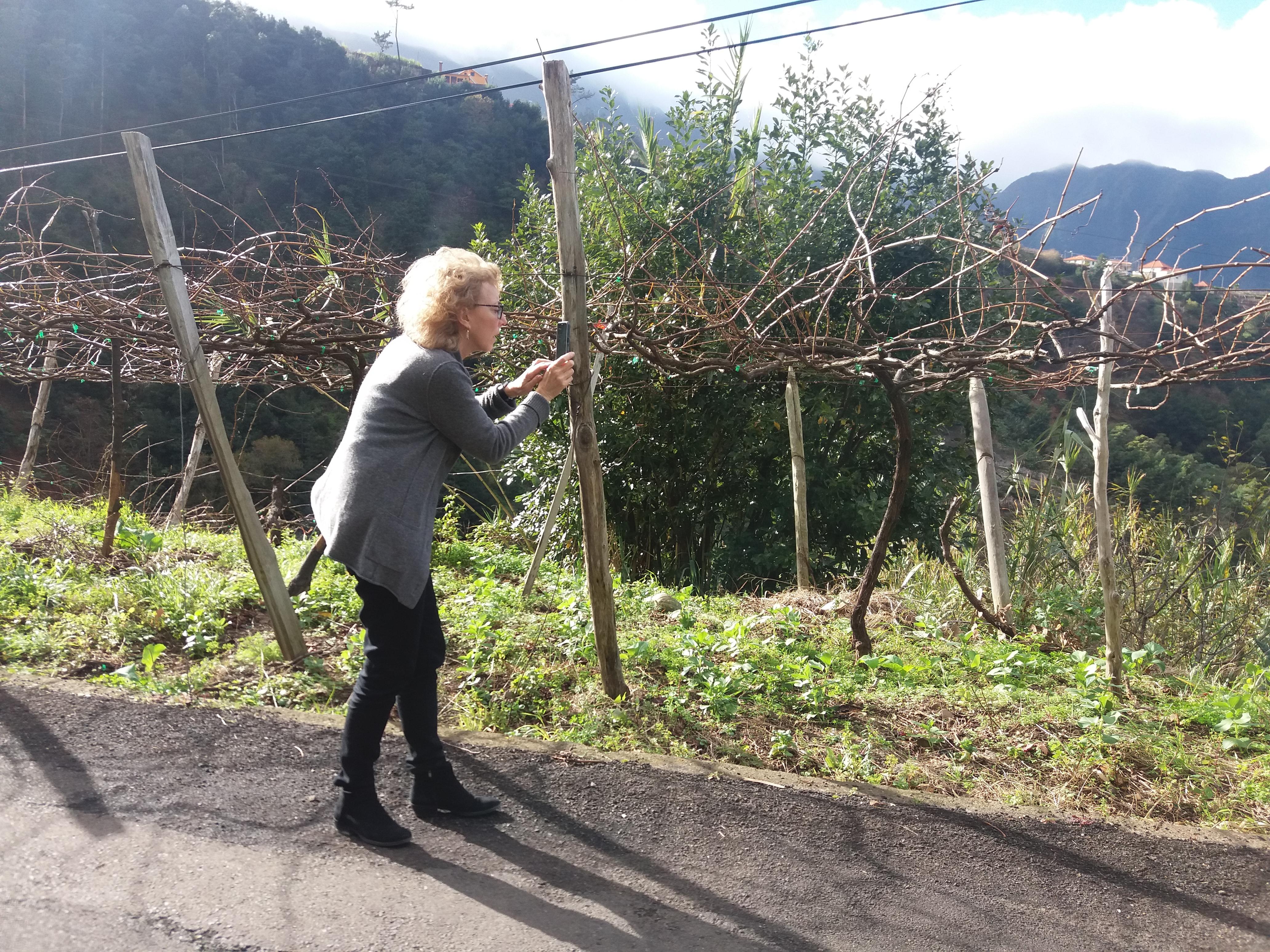 Jornalista norte-americana de visita à Região Demarcada da Madeira
