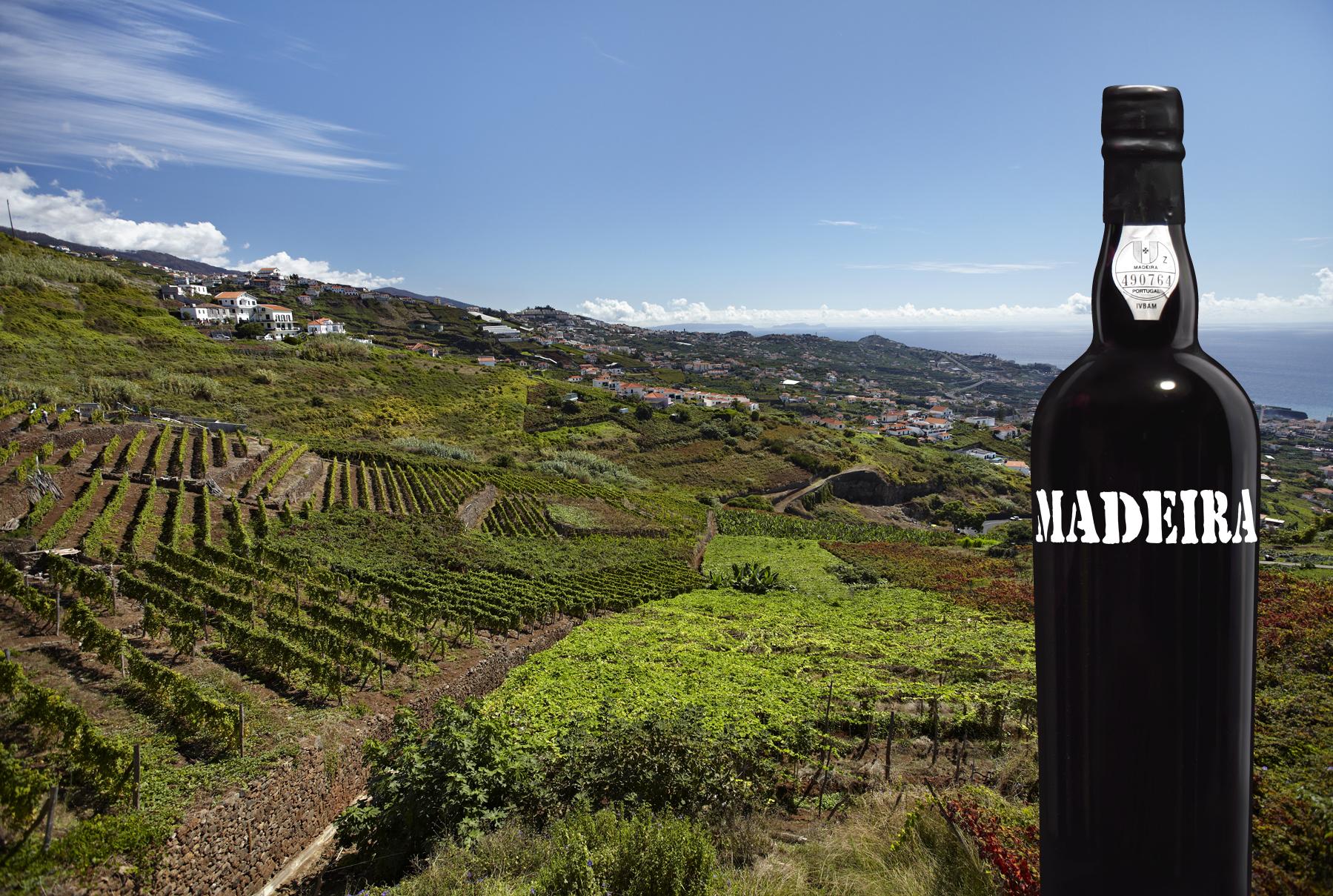 Vinho Madeira em ações promocionais nos EUA