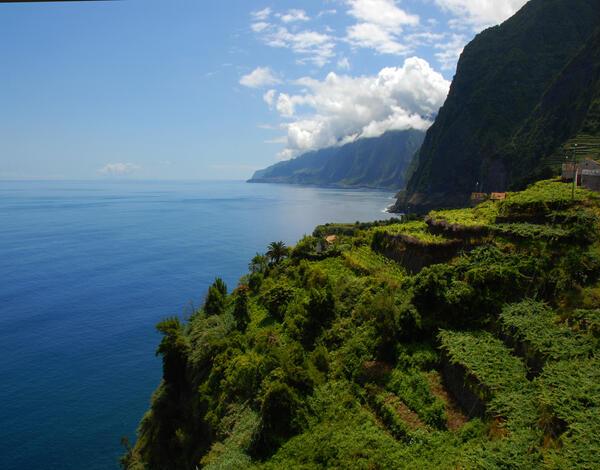 Profissionais e enófilos holandeses visitam a Região Demarcada da Madeira