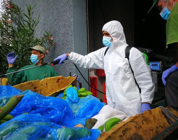 Agricultura protege retirada dos produtos de excelência do município de Câmara de Lobos