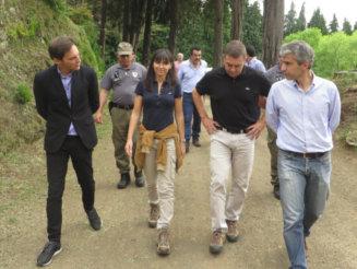 Governo quer criar Instituto das Florestas e Conservação da Natureza